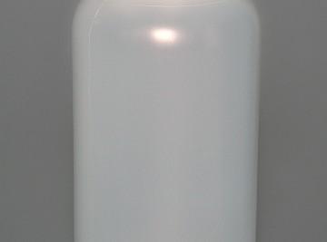 Dscn4115T